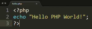 first php code in editor