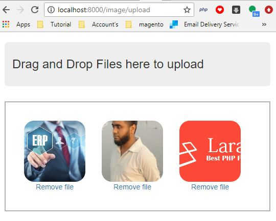 Laravel Drag and Drop File Upload Form with Dropzone JS